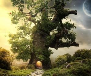Cuento Infantil: El árbol mágico
