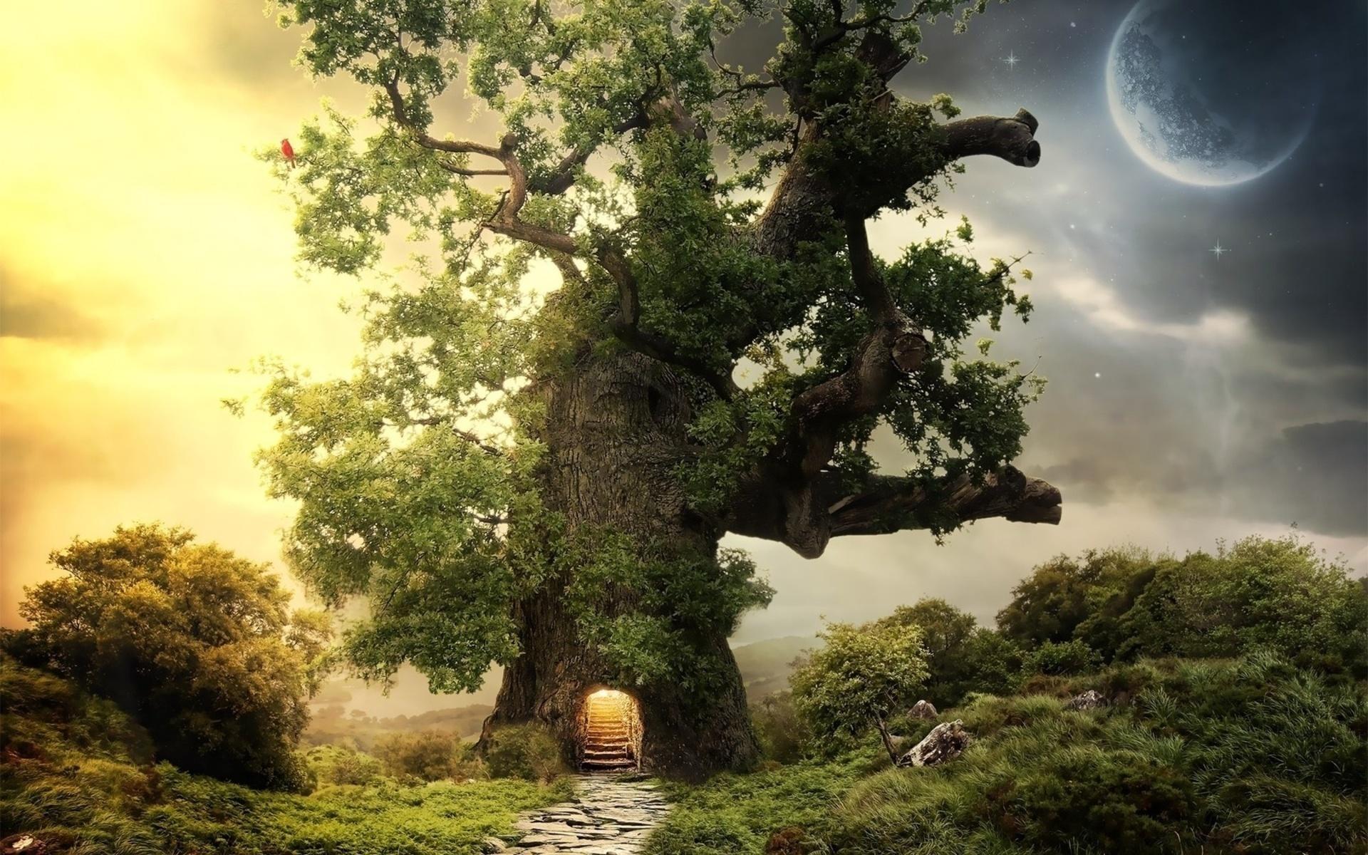 cuento infantil El árbol mágico